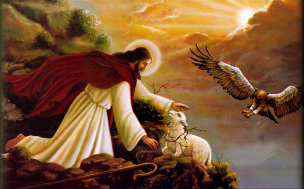 Tìm cho kỳ được con chiên bị mất