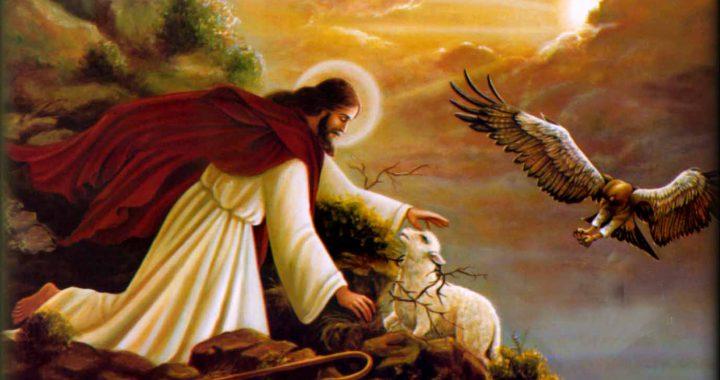 """Mục Tử """"Đẹp"""" Giêsu Kitô Dẫn Đường Con Đi – CN Chúa Chiên Lành"""